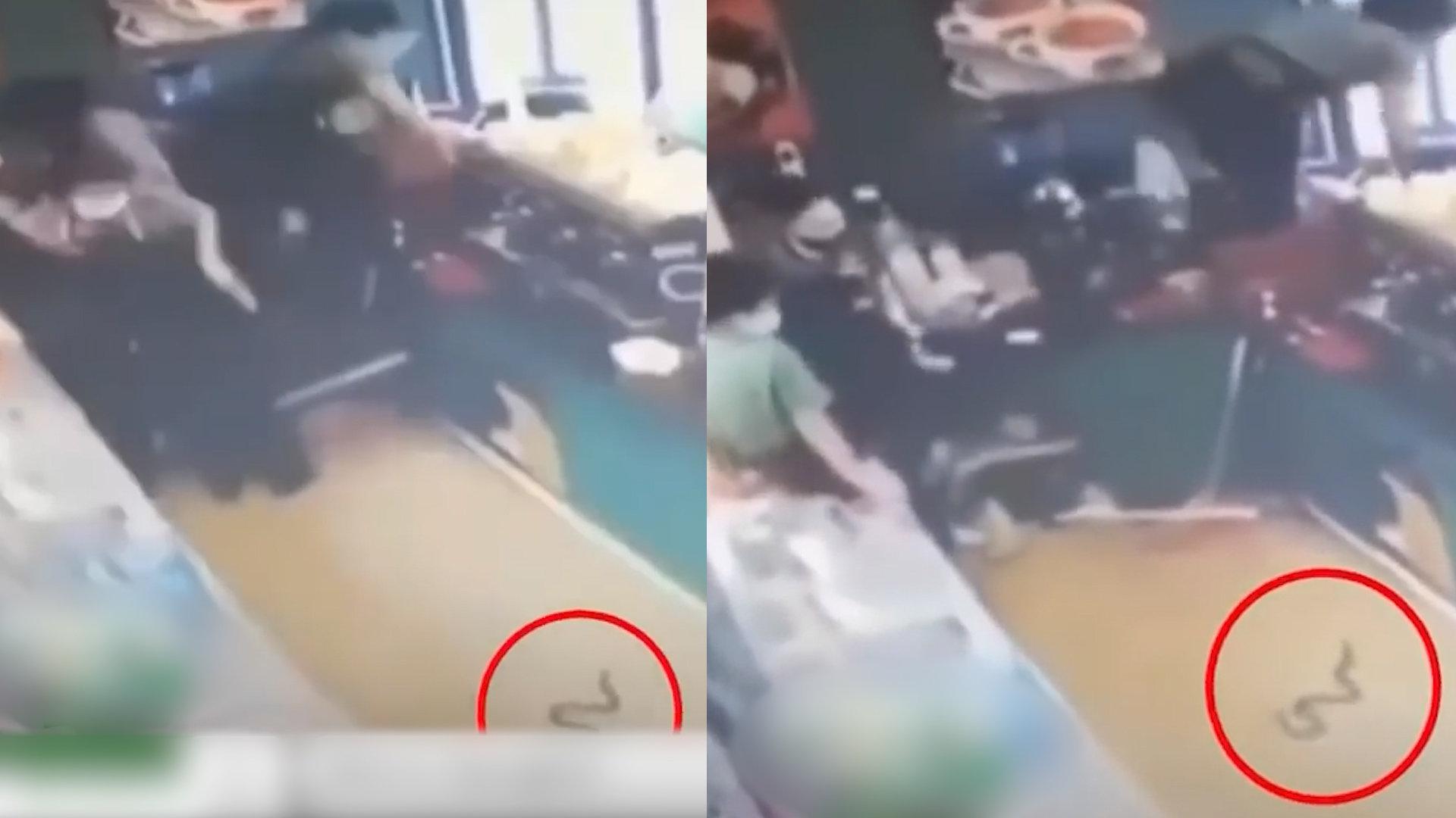 饮品店出现不速之客,店员看清后秒变运动员翻越吧台,笑喷网友