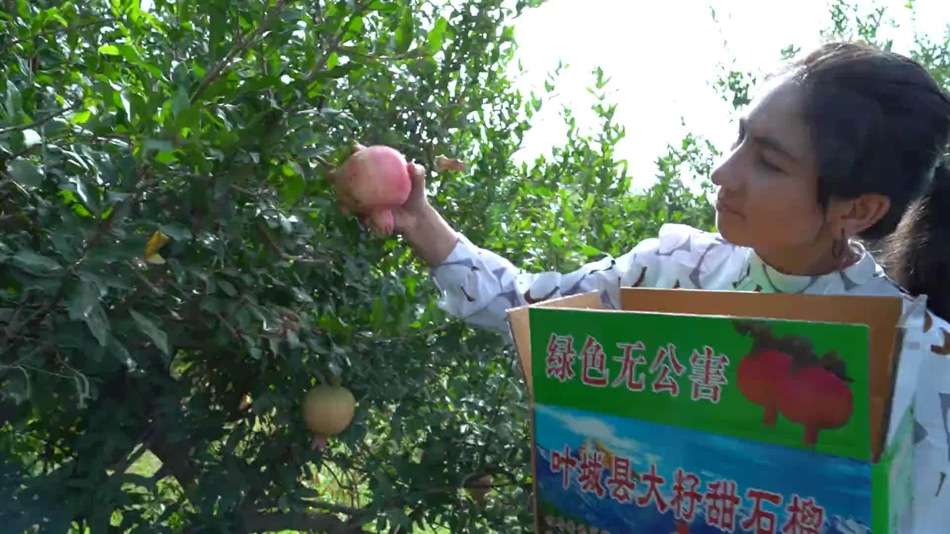 《我在南疆丨饰品销售的园丁生活》饰品销售员努尔古丽……