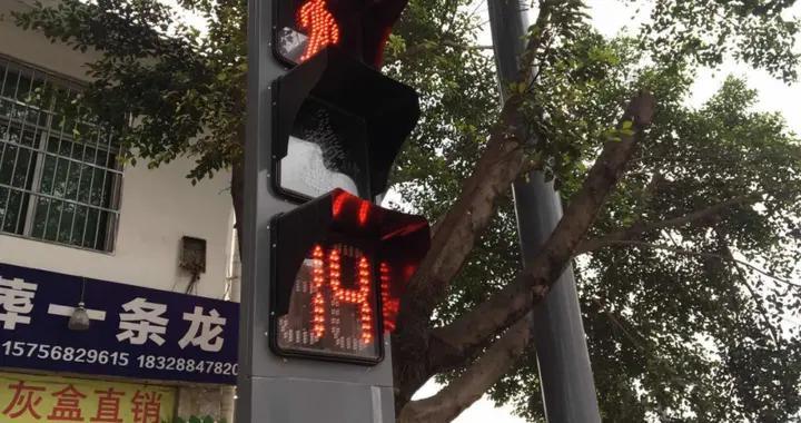 """低头族注意啦!西昌合盐路安装了""""会说话""""的人行横道信号灯"""