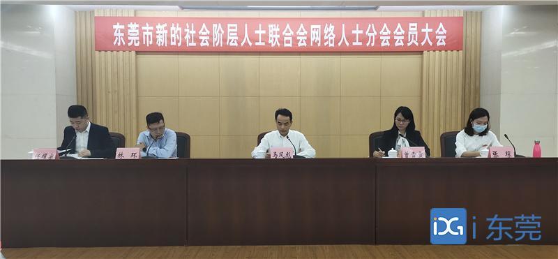 东莞市新的社会阶层人士联合会网络人士分会成立