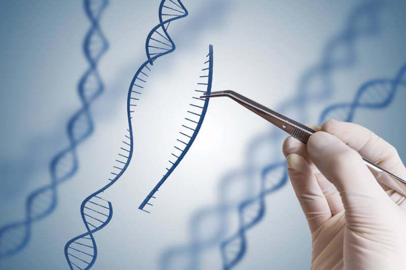 博雅辑因提交国内首个CRISPR基因编辑疗法临床试验申请,获国家药监局受理