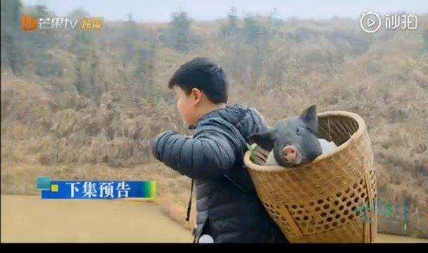 赵小果背猪真是百看不厌 乐华太子出来圈圈粉啦……