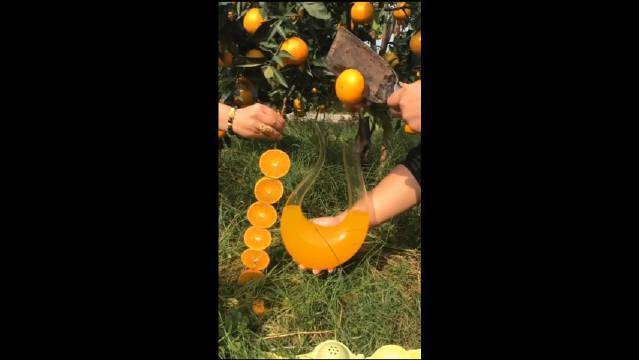 我知道你家橙子水分多,但没想到你是买醒酒器的,太会做生意!