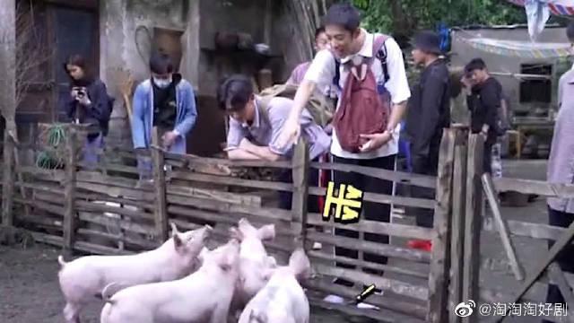 《风犬少年的天空》彭昱畅|张婧仪 马田这是准备当训导员了吗?