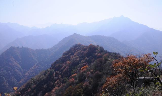 看红叶不必去黄柏塬,西安人身边这条秦岭老国道,一进山就被美翻