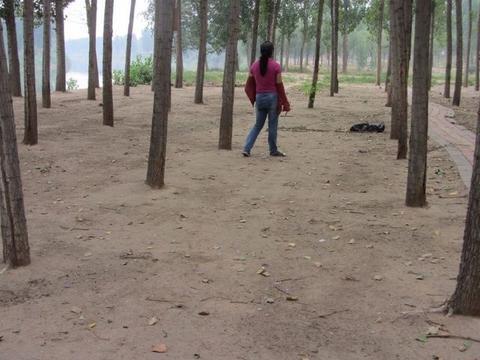 农村林间隆起一个个小土堆,扒开土层,收获颇丰