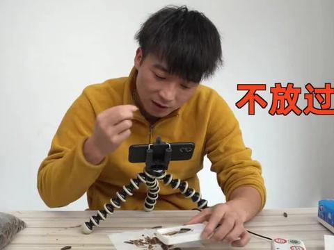 网购140元自动剥瓜子机,真的可以解放双手,成就梦想吗?