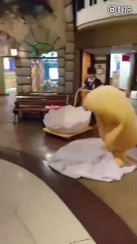 一只会自己收拾蛋清的懒蛋黄,最后那一趴简直萌翻了