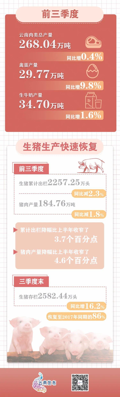 【图解】今年前三季度,云南肉类供应情况如何→图片