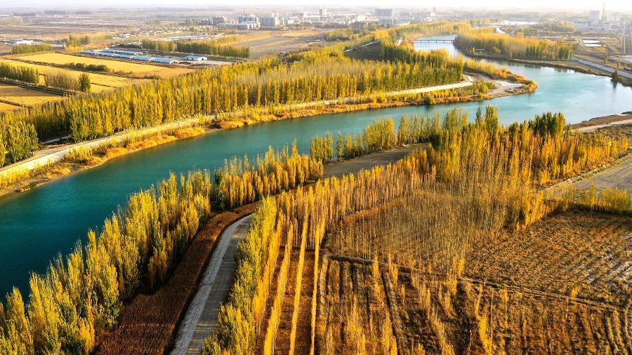 绿水青山丨新疆博湖:开都河畔醉金秋
