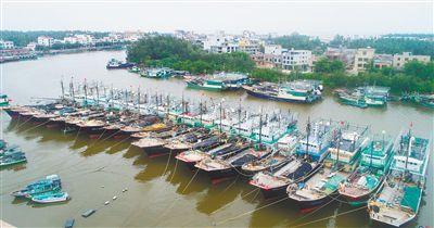 """防御台风""""莫拉菲"""" 琼海潭门渔港渔船回港避风"""
