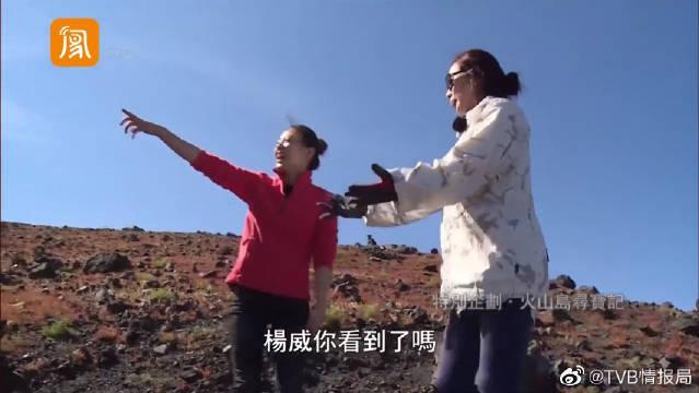陈松伶与杨云为游戏打架? 张铎和杨威在一旁看得津津有味!