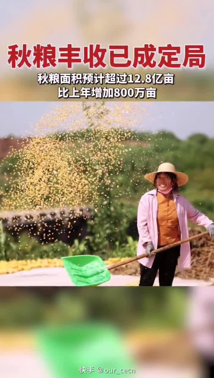 农业农村部:秋粮面积预计超12.8亿亩……