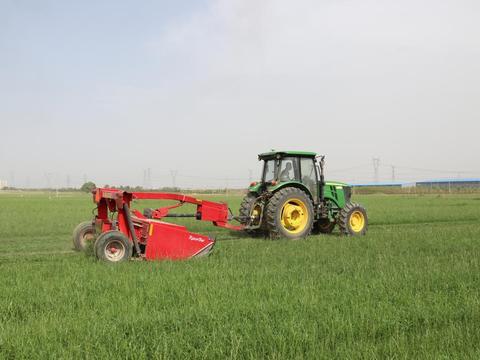 以党建为引领 蒙牛奶源黑麦草种植让农牧民的钱袋子鼓起来