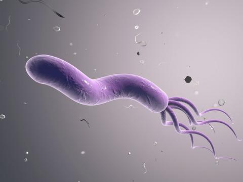 """幽门螺杆菌超标有哪些表现?身体若有""""1臭1痛"""",别忽视"""