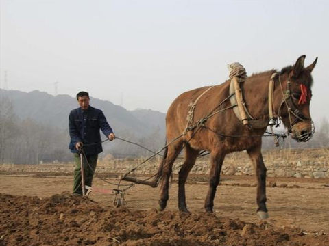 土地承包延长30年不变,能给农民带来什么好处?为啥有人不乐意?