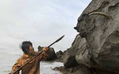 西伯利亚海边冻土层暴露出来后,引得附近村民纷纷前来寻宝