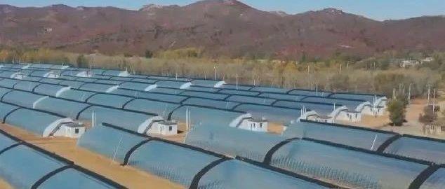 全省设施农业建设现场会在朝阳召开