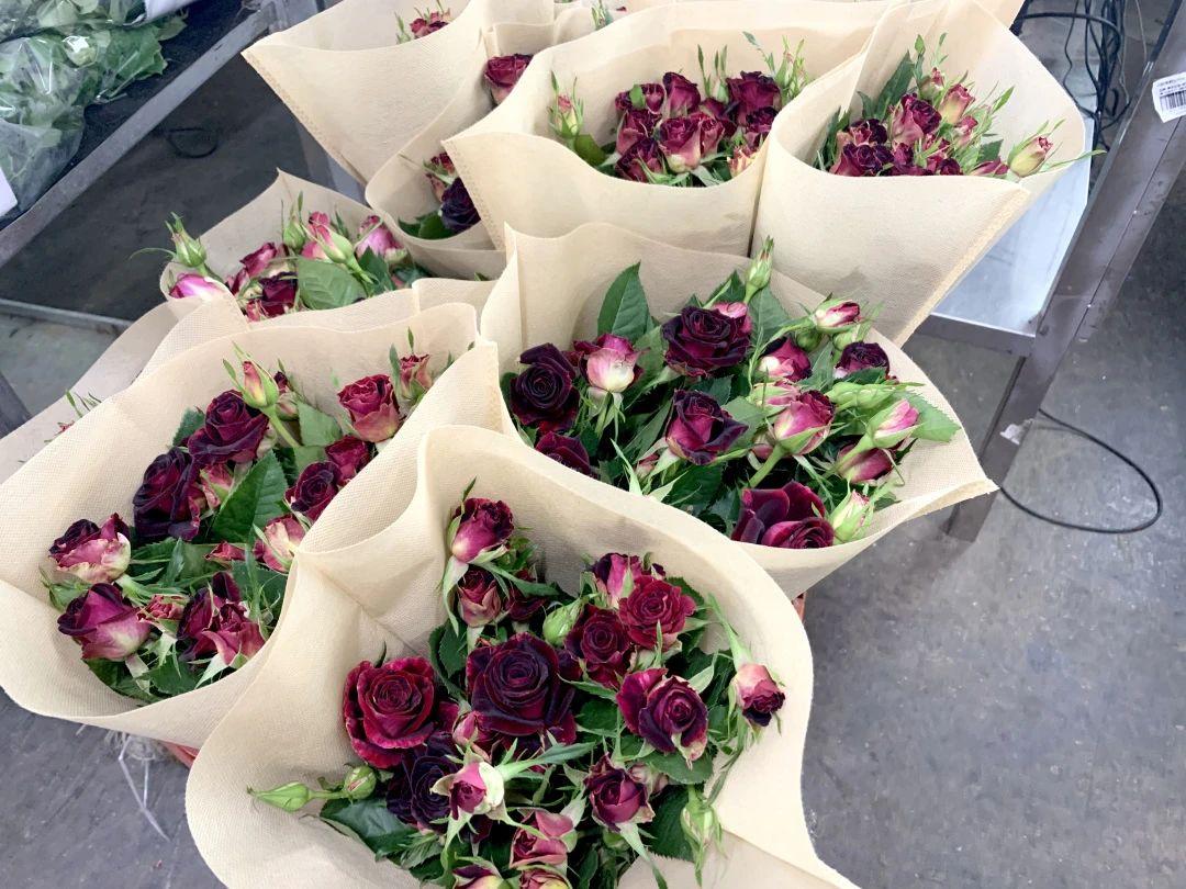 现场|从花田到斗南,一朵玫瑰花开启全球之旅