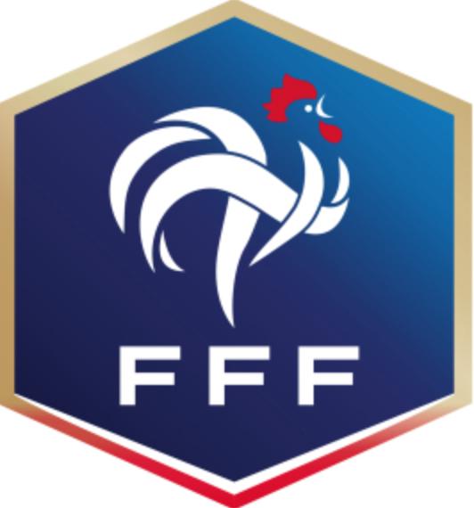 法国足协:疫情严重,法国杯等赛事暂停