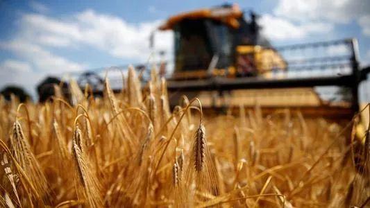 数据显示,中国正退出澳大利亚农业图片