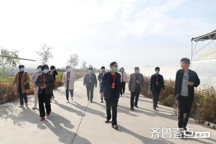 博兴县庞家镇组织人大代表视察2020年民生实事项目进展情况