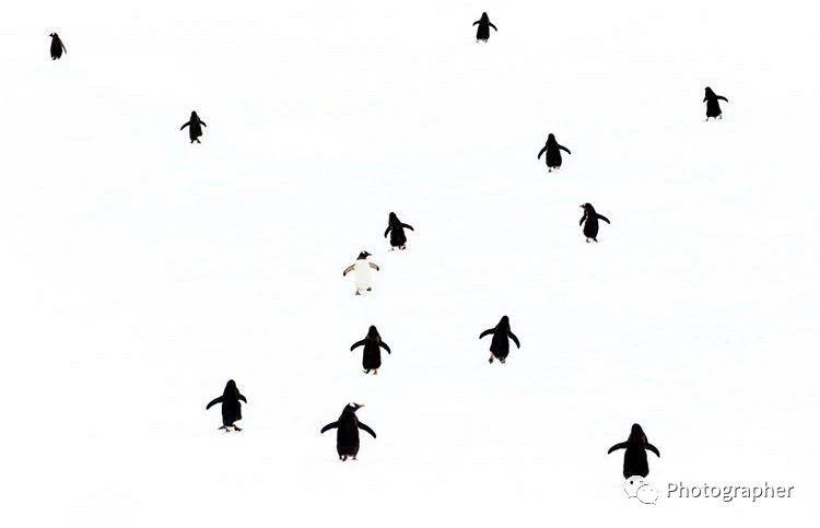 走自己的路\n\n\nfoto by  乔纳森·艾瑞士
