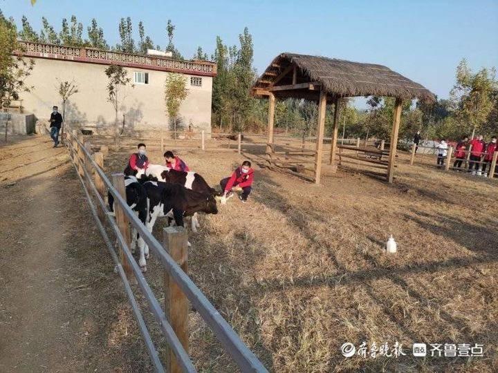 泰安一中学生走进休闲观光牧场科普基地,在劳动中增长学识