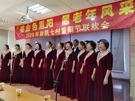 泗泾新凯七村居委会举办重阳节文艺联欢活动