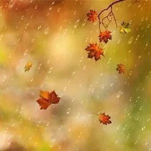 哈尔滨气温回升 周末有小雨
