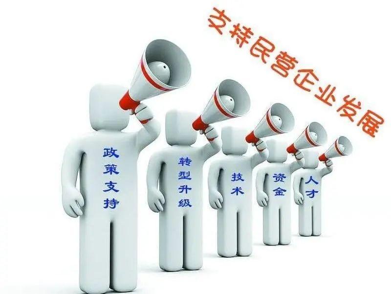 赞!龙游县民营经济统战工作获评全省优秀案例