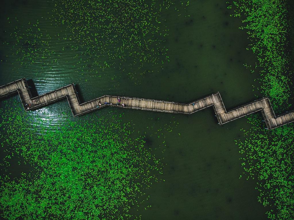 到此一游|观鸟、野钓、赏芦苇,探索北京湿地之美图片