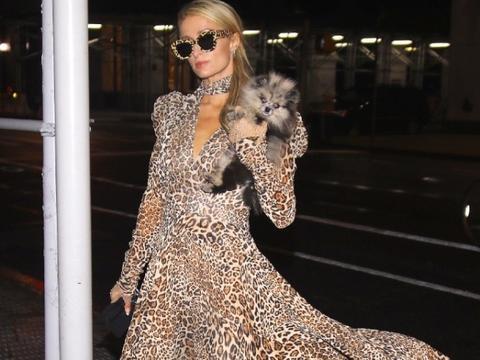 希尔顿大小姐品味真另类一袭豹纹长裙low爆了,平板身材毫无看点