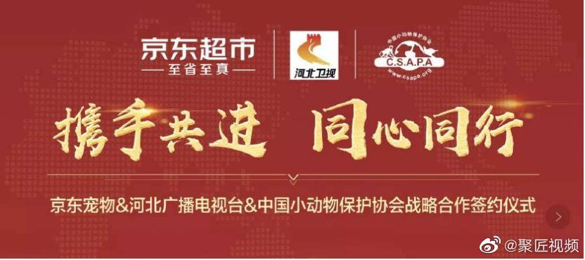 京东与河北广电及中国小动物保护协会签订战略合作协议