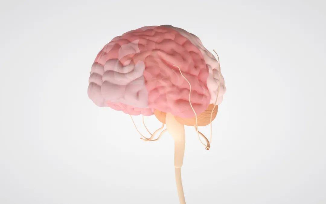 人类健康的头号杀手:脑卒中!