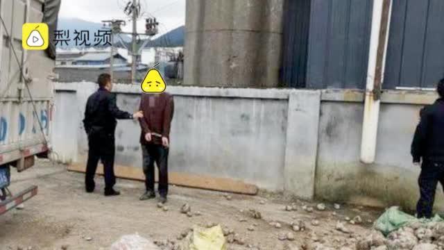 男子偷2000斤魔芋卖了打赏女主播:每晚网上送花送火箭