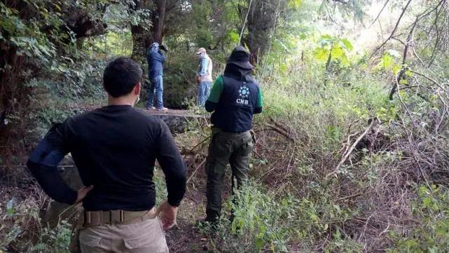 墨西哥天下搜刮委员会事情职员在实行搜刮义务(资料图)