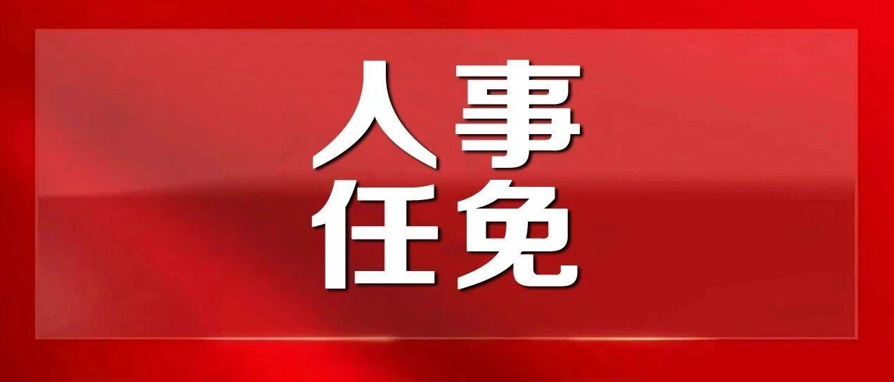 连云港最新人事消息