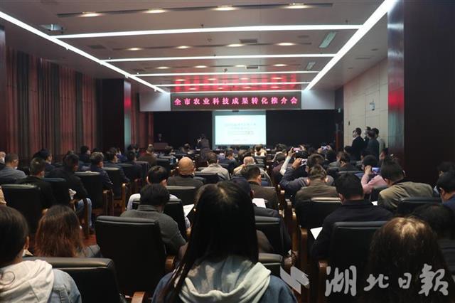 武汉农业科技成果转化项目签约额近亿元