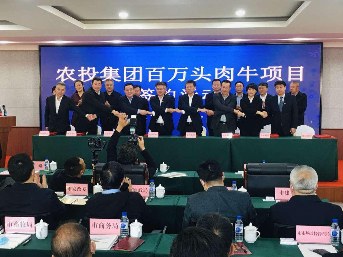 长春市举行百万头肉牛发展项目签约活动