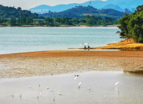 """广州市水务局请您""""拍水"""",拍出河湖靓照最高可获2000元奖金"""