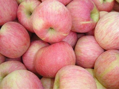 爽口又养生的3种食物,促进排毒,改善肤质,美容减肥