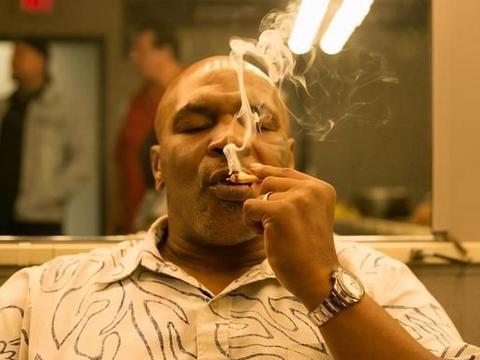 54岁泰森终成富豪!大麻牧场月入百万,而这只是冰山一角!