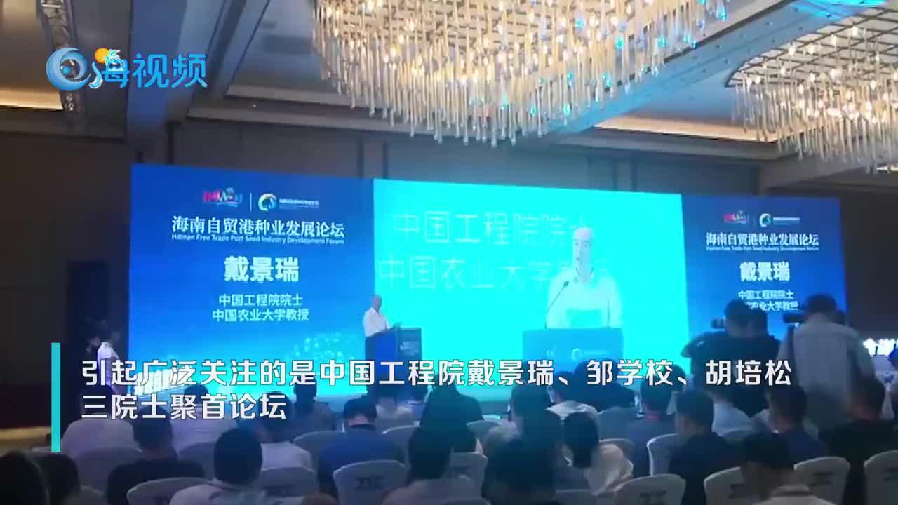 """【海视频】聚焦中国种业""""南繁硅谷"""" 专家学者齐聚三亚""""论剑"""""""