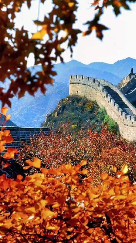 秋日的北京八达岭长城雄伟壮观秋意盎然……