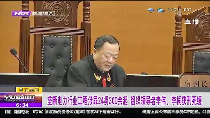 垄断电力行业工程涉罪24类300余起,组织领导者李伟、李桐获死缓
