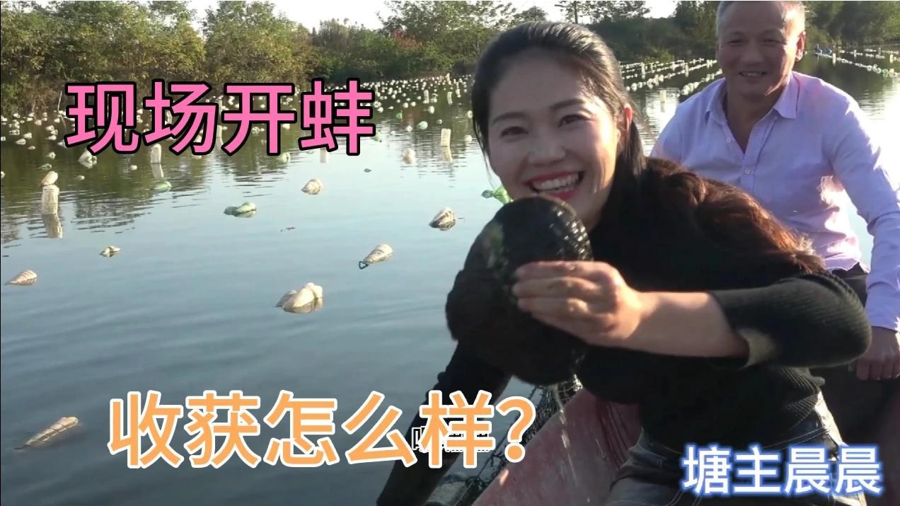 晨晨三妯娌,游湖取蚌取珍珠,三位美女有什么收获?