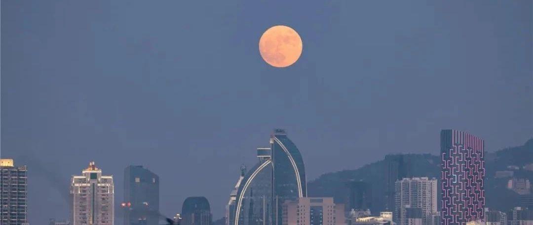 """""""天鹅""""变身今年风王!厦门发布大风黄色预警!今晚抬头看月亮,有惊喜→→"""