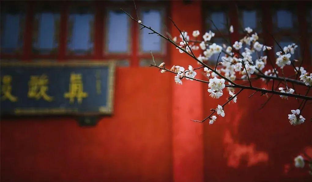 他们从故宫里考据出384种传统色:中国审美太惊艳 || Chin@美物