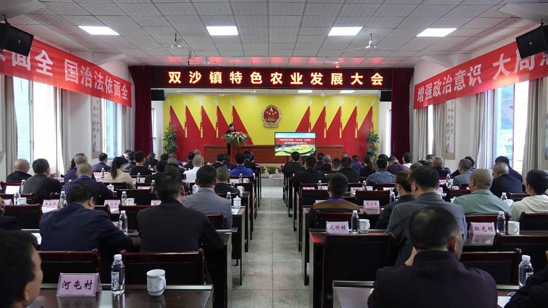 """四川谷林""""绘画村""""签署了1.7亿美元的合"""